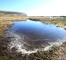 Cuckmere Haven scene by Emma Bennett