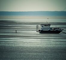 Stranded by HarlandPro