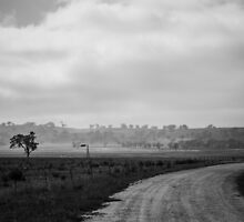 Misty Morning in B&W by Candice84