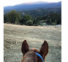 View from the Saddle IPhone Case by emla