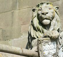 Lion on the Cardiff Castle animal wall by photoeverywhere