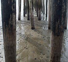 Cayucos Wooden Pier by photoeverywhere