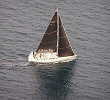Skipper course by skippercourse