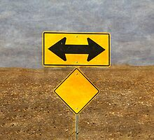 Which Way to Turn? by Floyd Hopper