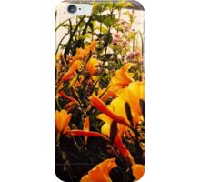 Yellow Flowers at the Lake iPhone Case/Skin