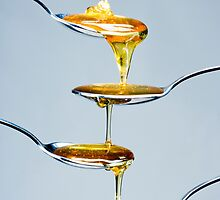 Honey by jade-cooper-art