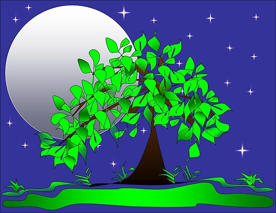 Night Time Tree and Moon by delaneyworld