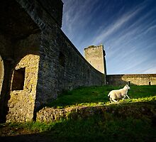 Lamb of Kells Priory by Ben Ryan