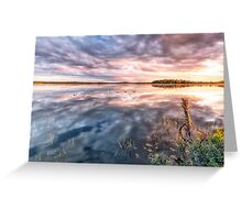 Last Rays of Warmth Greeting Card