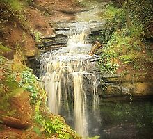 Waterfall by Richard  Nuttall