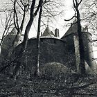 Castle in the Woods by Vicki Spindler (VHS Photography)