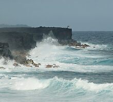 Kalapana oceanscape by photoeverywhere
