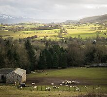 Lake District landscape by paulwhittle