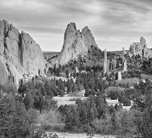 Gods Colorado Garden In Black and White    by Bo Insogna