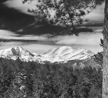 Colorado Rocky Mountain View Black and White by Bo Insogna