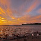 Pelican sunset in Coffin Bay by Ian Berry