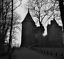 Castell Coch by Paula J James