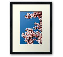 Welcome the Magnolia (Portrait) Framed Print