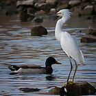Egret Standing guard by Dennis Reagan