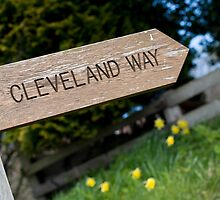 Wooden Cleveland Way signpost by photoeverywhere