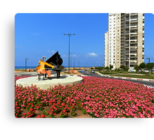 Piano Man and Red Flowers Canvas Print