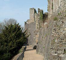 Castle Walk, Richmond by Stephen Smith