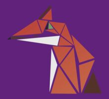 Fox Triangles by Jack Howse