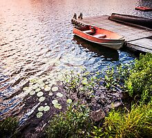 Rowboat at lake shore at sunrise by Elena Elisseeva