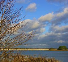 From Hayling Island by lezvee