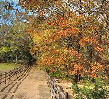 Fall Fence Line by bannercgtl10