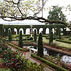 The Italian Garden by Carol Bailey White