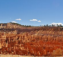 Bryce Canyon Landscape by Claudia Harrison