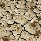 Parched Earth Abstract by Debbie Oppermann