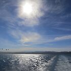 Crossing Monterey Bay by David Denny