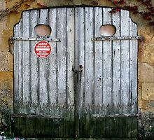 Faded Blue Garage Door in France by GeorgiaFowler