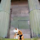 Lobito and Goochey at the Oratory  by Debra Kurs