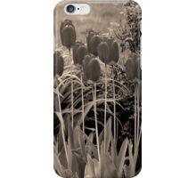 sepia tulip clump iPhone Case/Skin