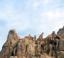 joshua tree rockface by photoeverywhere