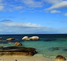 Boulders Beach,  South Africa by JenniferEllen