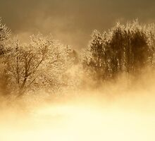 17.3.2014: Cold Morning at Loimijoki River I by Petri Volanen