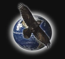 crow earth by arteology