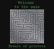 Welcome to the maze by SamanthaMirosch