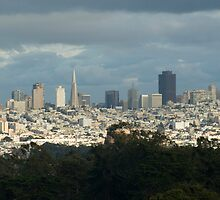 san francisco horizons by photoeverywhere