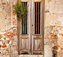 Dilapidated Brown Wood Door of Portugal by David Letts
