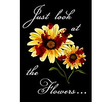 Look at the Flowers Photographic Print