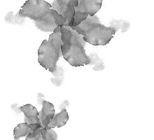 Simplistic Painted Flowers by ChloeJade