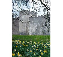 castle fortifications Photographic Print