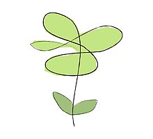 Simple line flower - lime Photographic Print