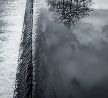Waterfall and tree reflexion by martinbenito