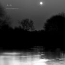 """"""" Moon Shine Dancing On The River """"   by Richard Couchman"""